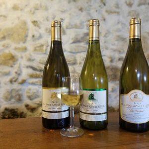 Domaine Thierry Besard vins blancs d'Azay Le Rideau